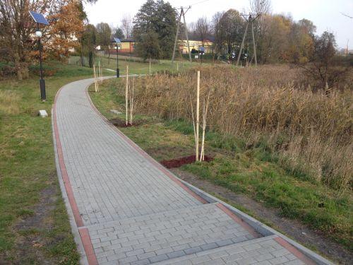 Posadziliśmy 70 drzew