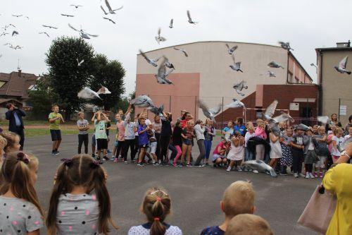 Gołębie - sport, pasja i tradycja
